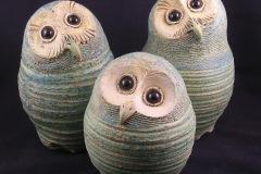 5.M.Gallagher.Owls300